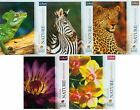Trefl 1000 Pieces Nature Wildlife Plants Animals Jigsaw puzzle Board Game