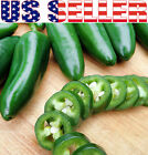 30+ ORGANIC Jalapeno Pepper Seeds Chili HOT Heirloom NON GMO Mexican