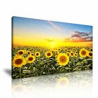 FLOWER Sunflower Canvas Framed Printed Wall Art 6 ~ More Size