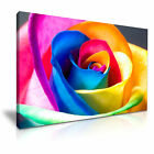 RainBow Colorful Rose Flower Canvas Nature Modern Wall Art Deco ~ 9 Sizes