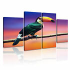 ANIMAL Bird Canvas Framed Printed Wall Art 10 ~ 4 Panels