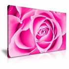 ROSE Large Pink Rose Flower Canvas Wall Art Picture Print ~ More Size