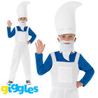 Blue Garden Gnome Costume Boys World Book Day Week Fancy Dress Outfit