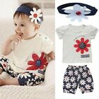 3pcs/Set Flower Baby Kids Girl T-shirts Top+Headband+Pants Outfit Clothing ST43