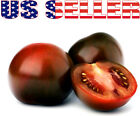 30+ ORGANICALLY GROWN Black Prince Tomato Heirloom NON GMO Productive Delicious