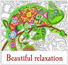 Coloring Book For Adults Beautiful Relaxation Anti Stress Therapy Art Fun NEW
