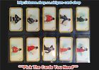 ☆ Carreras - The Greyhound Racing Game 1926 (G) ***Pick The Cards You Need***