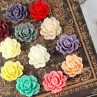 Wholesale Flatbacks Resin Lucite Cabochon Cameo Peony Flower Embellishment Card
