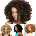NEW FASHION WOMEN CASUAL PARTY SHORT MIX CURLY BOB STYLE FULL WIG NATURAL HAIR