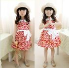 New Kids Toddlers Girls 100% Cotton High Quality Leaves Image  3-8 T Dress D606