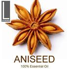 Aniseed Essential Oils - 100% Pure Aromatherapy Grade- 10ml, 50ml, 100ml