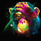 Chimpanzee Monkey Colourful Abstract WALL ART CANVAS FRAMED OR POSTER PRINT