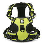 Quality Soft Mesh Dog Harness with 3M Reflective  - XS to XL