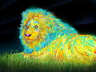 D8119 Colorful Lion Night Animal Art Gigantic Print POSTER