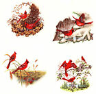 Ceramic Decals Seasons Cardinal Bird Spring Summer Autumn Winter Set image