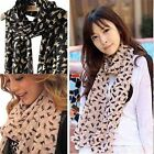 GREAT Ladies Cat Print Animal Chiffon Scarf Celebrity Fashion Shawl Scarves