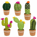 Sass & Belle Colourful CACTUS | Knitted Fabric Faux PLANT | Plant Pot Decoration