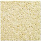 Bathroom Carpet Flooring Clotted Cream Barbados Carousel Range **BEST PRICES**
