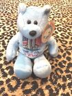 LIMITED EDITION THE TWINS 4- EVER 9/11 STUFFED TOY BLUE BEAR