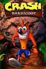 Crash Bandicoot Poster |5 Sizes| Playstation PS1 PSP xbox Nintendo DS Wii GBA