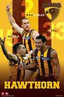 "AFL HAWTHORN PLAYERS  POSTER ""LICENSED"" ROUGHEAD, HODGE, RIOLI"