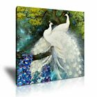 White Peacocks Canvas Wall Picture Print 9 Sizes
