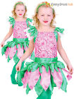 Childs Forest Fairy Costume Girls Fairy Tale Fancy Dress Kids Book Week Outfit