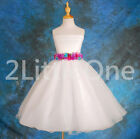 Embrossed Flower Removable Belt Tulle Dress Wedding Girl Pageant Size 2T-8 #062