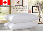 100% Cotton Canadian White Down Pillow Filled in Canada 1 Piece