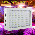 2017 600W&1000W&1200W 2 Chips LED Grow Light Full Spectrum Panel Indoor Plant
