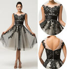 Short/Mini Lace Short Mini Cocktail Dress Party Dresses Evening Formal Prom New