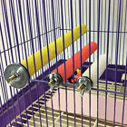 Bird Stand Foot Toys Paw Grinding Perches Cage Parrot Budgie Chew Rainbow Colors