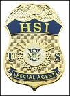 Immigration and Customs Enforcement Mini Badge Lapel Pins