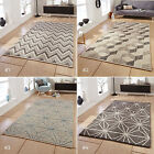 LARGE THICK 100% HAND KNOTTED INDIAN WOOL GEOMETRIC NATURAL DESIGNS ALPHA RUG