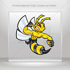 Decal Stickers Bee, Hornet, Wasp, Vespa Fighter Vehicle  mtv XWWXR