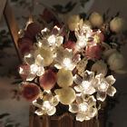 50 LED Solar String Lights Cherry Blossom LED Waterproof Outdoor Decoration 5M