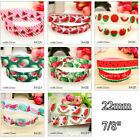 "5 10 Yds 7/8"" 22mm Grosgrain Watermelon Printed Pattern Ribbon Craft Multi-Color"