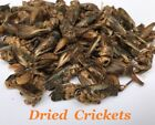 QUALITY DRIED CRICKETS NATURAL FOOD FEED TURTLE REPTILE BIRD GECKO LIZARD FISH