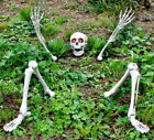 SKELETON GROOM PROP GROUND BREAKING LIGHT UP HALLOWEEN DECORATION WEDDING COUPLE
