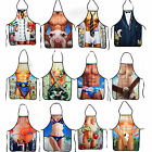 New Novelty Funny Sexy Joke Aprons Rude Cheeky Kitchen BBQ Party Designs