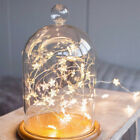 Xmas LED Battery Star Copper Wire Lights Christmas Home Twinkle Light Decor