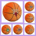 "NBA Licensed Plush 3D Basketball 15"" x 15"" Throw Toss Pillow - Choose Your Team"