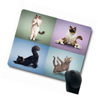 Funy Professional Yoga Cat do Difficult Yoga Positions Customized Mouse Pad