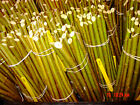Willow Cuttings,Willow Rods,Hedging,Windbreak,Willow Rods2Willow Structures,whip