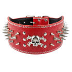 """3.0"""" Wide Leather Dog Collar Skull Studded for Large Dogs Pit Bull Labrador XL"""