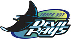Tampa Bay Devil Rays MLB Team Logo Color Printed Decal Sticker Car Window Wall on Ebay