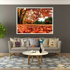 3d Red Forest 64 Fake Framed Poster Home Decor Print Painting Unique Art Summer