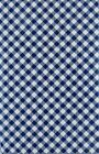 Blue Gingham Check Vinyl Tablecloth Summer Fun Outdoor Picnic Elrene Asst Size
