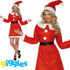 Miss Santa Costume Womens Mrs Claus Father Christmas Xmas Fancy Dress Outfit