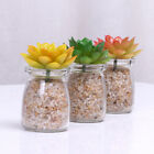 Greenery Artificial Succulent Plant Mini Faux Potted Plants Home Hotel Decor